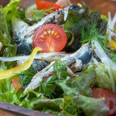 オイルサーディンとハーブのサラダ
